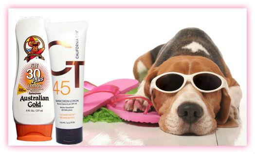 SPF sun protection for summer fun